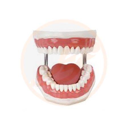 phantom gigi